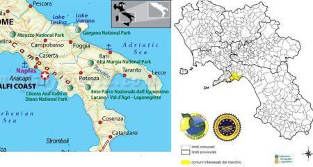 Anbaugebiet Limone Costa